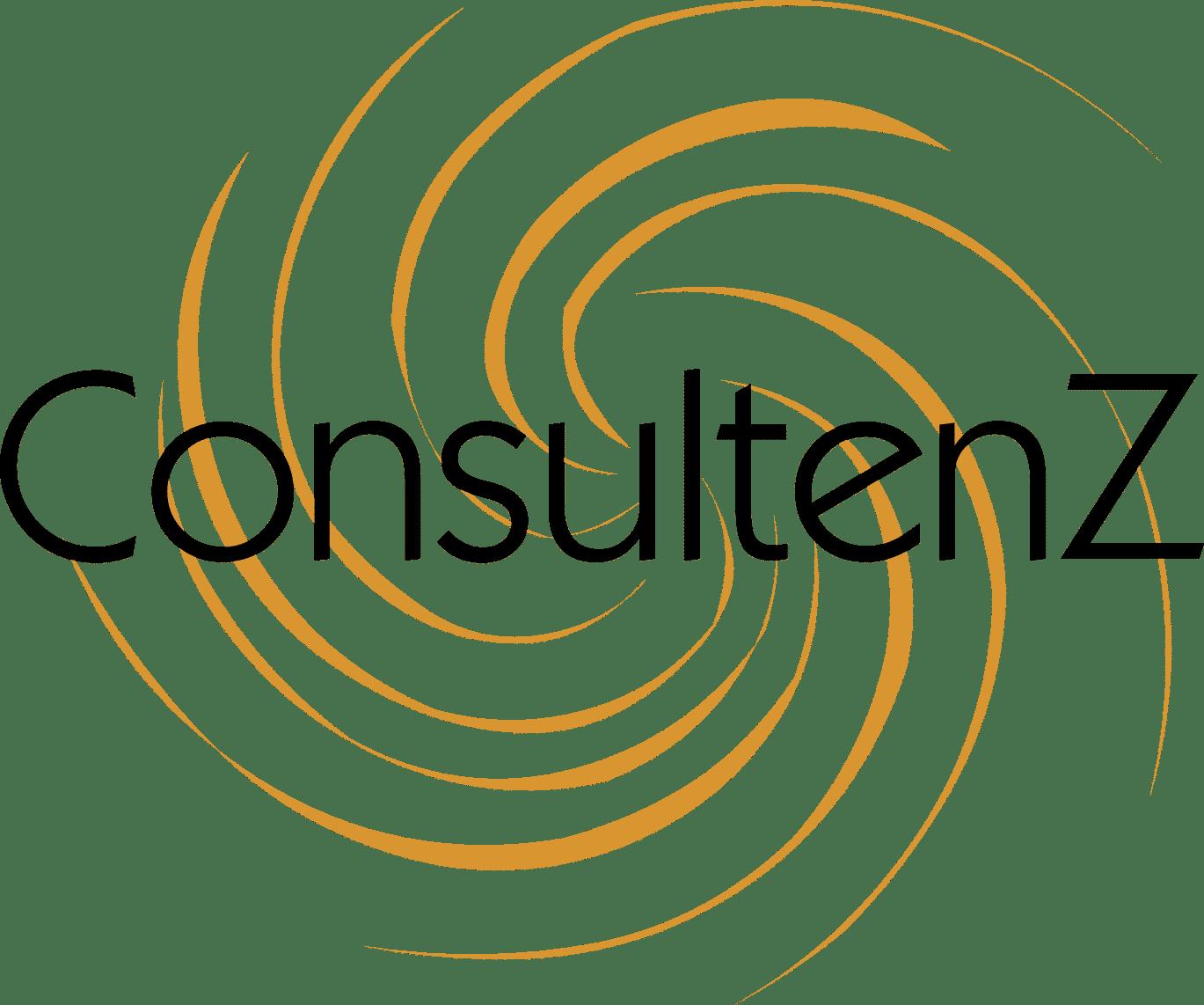 Consultenz: Conseil en gestion & transmission d'entreprise – Lyon