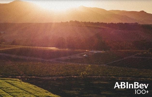 RSE : AB InBev lance son 100+ Sustainability Accelerator