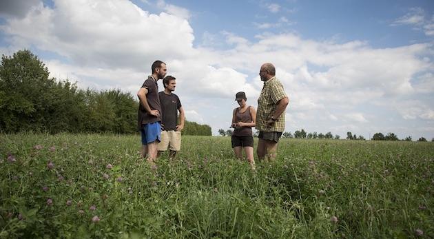 477 GIEE engagées dans l'agroécologie