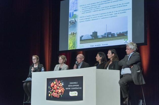 Agroécologie: Savéol veut développer la transition énergétique chez les maraîchers