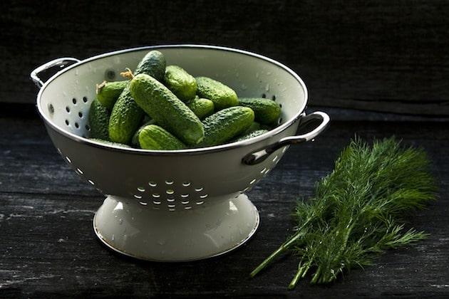 Condiment : La relance du cornichon français