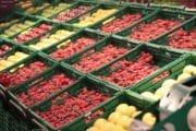 RSE : IFCO décerne des certificats à ses partenaires distributeurs