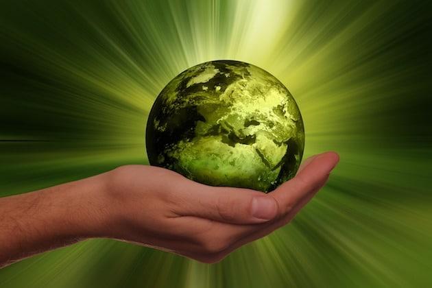 Performance Énergétique des IAA : Cinq nominés en lice