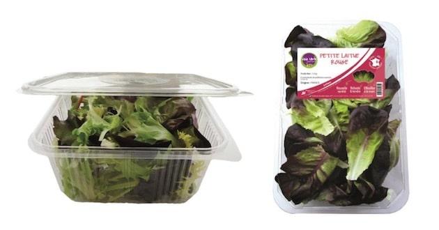 Voie Verte s'engage sur le marché des légumes frais et découpés