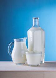 Ralentissement de la production laitière en France