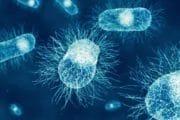 Sécurité alimentaire : Clear Labs reçoit la certification AOAC pour les tests de dépistage de Salmonella