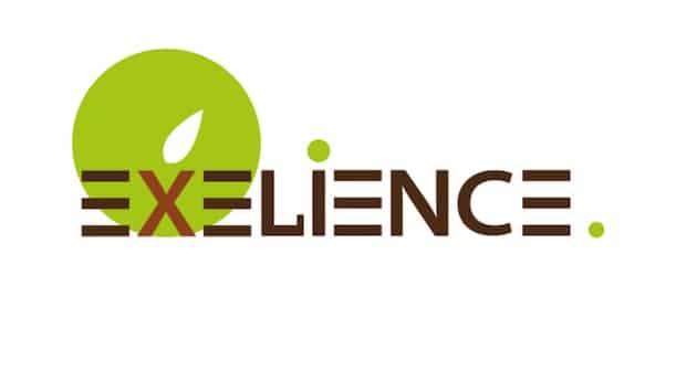 Exélience, nouvel acteur majeur de la semence certifiée en France