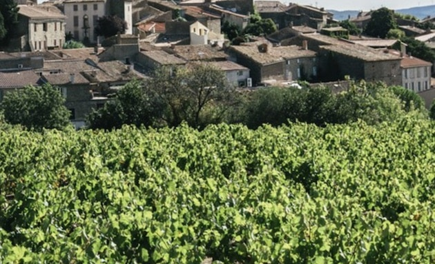 Vins Bio : InVivo Wine et Château Maris signent un accord de distribution mondiale