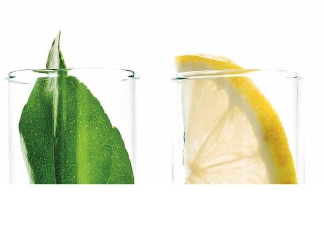 Aromatique alimentaire : Une filière productive et productrice