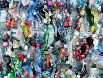 Emballage : Nestlé, Pepsico et Suntory Beverage rejoignent le consortium de recyclabilité des produits plastiques en PET