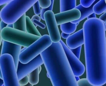 Sécurité alimentaire : Un test de Listeria optimisé par le séquençage de nouvelle génération (NGS)