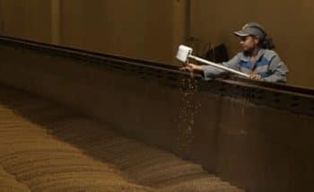 Malteurop s'installe au Mexique avec la construction d'une nouvelle malterie