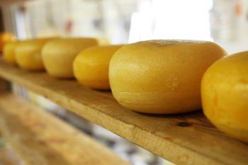 Produits laitiers: Une augmentation de 3 à 4% sur un an pour les yaourts et les fromages