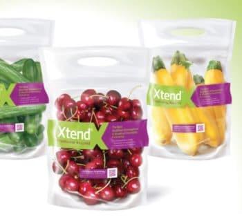 Emballage durable : StePac va présenter sa stratégie pour le conditionnement des produits frais