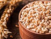 Cargill investit 32 millions d'euros en Europe pour produire des fibres solubles