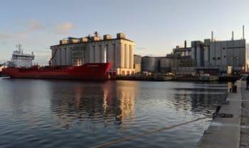 Cosucra ouvre une deuxième usine de traitement de pois au Danemark
