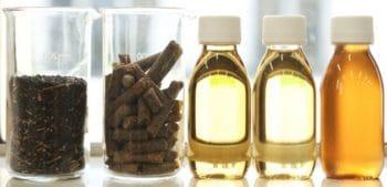 Saipol va se concentrer sur les productions d'huiles végétales