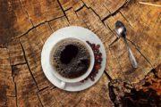 Innovation: Une variété hybride de café Arabica disponible pour la première fois sous forme de graines