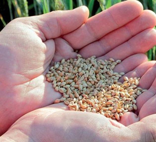 Océalia prépare l'avenir et s'engage pour une offre alimentaire durable