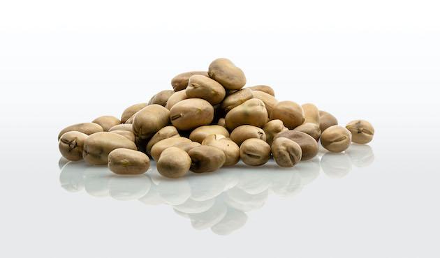 Roquette lance de nouvelles protéines végétales à base de pois et de féverole