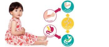 Ingrédients: Les hydrolysats de protéines de plus en plus importants dans la lutte contre les allergies