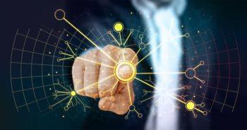 Microsoft et Danone veulent accélérer l'entrée de l'intelligence artificielledans l'agroalimentaire