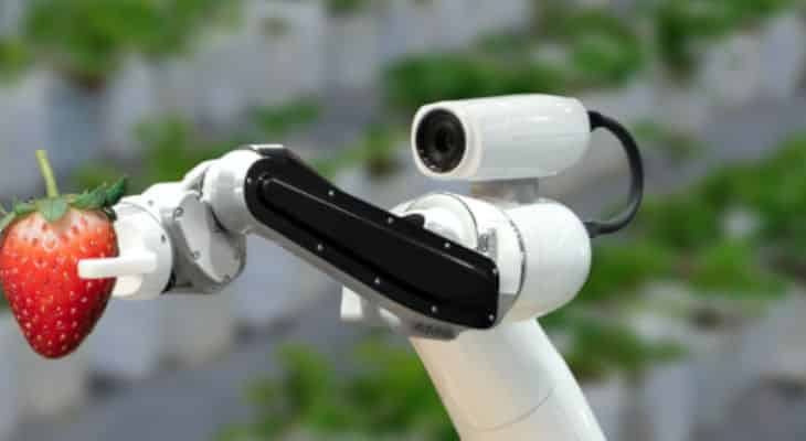 AgRoboFood accélère la transformation du secteur agroalimentaire via la robotique