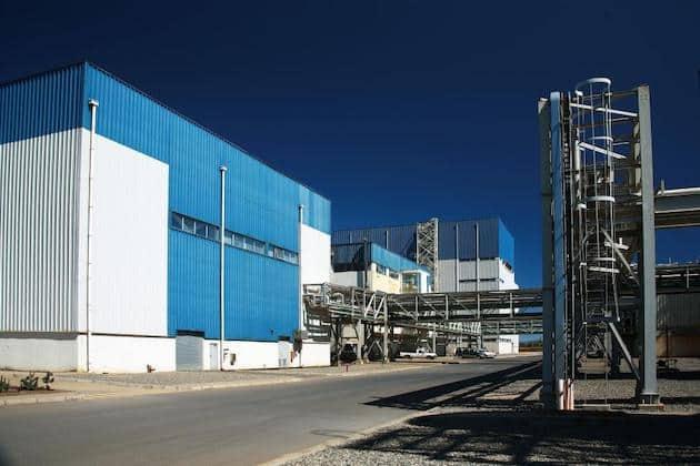 Beneo investit plus de 50 millions d'euros pour accroître la production d'inuline de chicorée