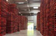 Transport et Logistique: Optimiser la gestion des palettes