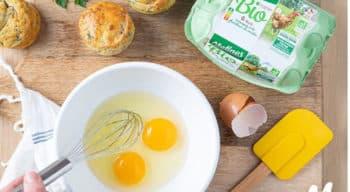 Matines poursuit sa transformation pour s'adapter à l'évolution du marché de l'œuf en France