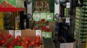 Automatisation : La PME finistérienne AB Process Ingénierie se renforce