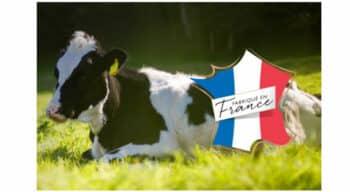 Nouveaux bacs carton, reformulation de recettes et soutien aux éleveurs pour Carte d'Or