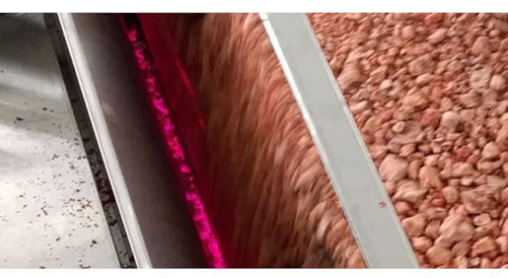 Tomra Food s'implante dans la filière de l'équarrissage