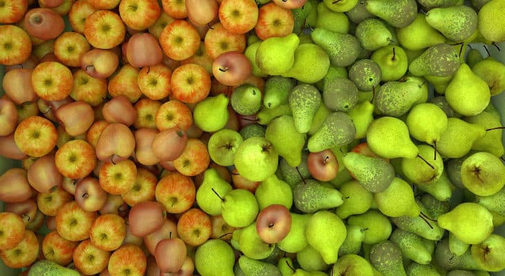 Une biosolution innovante pour la filière pommes-poires