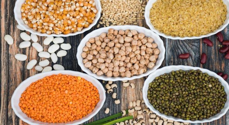 Ce que propose le Plan de Relance sur les protéines végétales