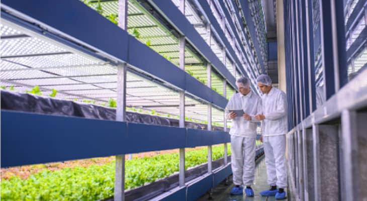 Casino poursuit son accompagnement de start-up de la Food Tech