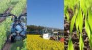Biosolutions : Agrauxine crée un département marketing global et dédie une équipe commerciale pour la France