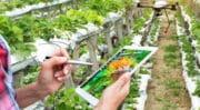 SIVAL : Le salon des techniques de productions végétales, reporté en 2022