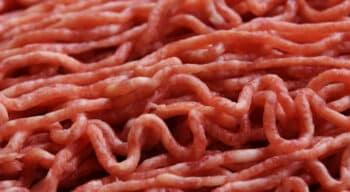Clean Meat : La Biotech Core Biogenesis lève 2.6 M€ pour développer une plateforme de bioproduction