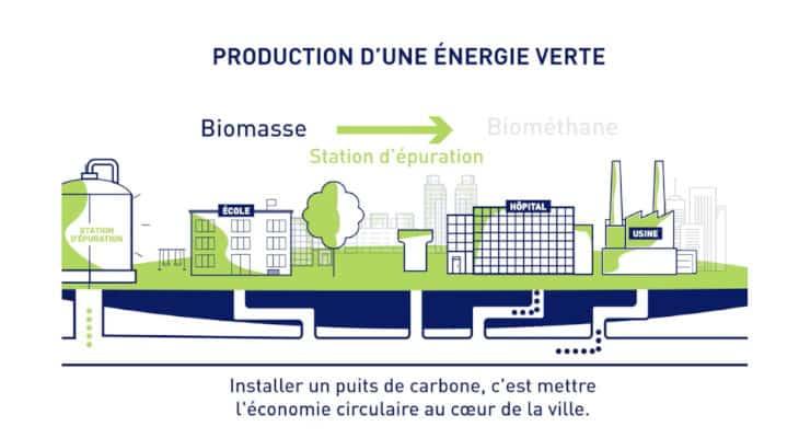 Industrie verte : Fermentalg et Suez veulent développer des photo-bioréacteurs algaux capables de capter du CO2