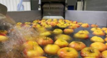 22 nouvelles PME intègrent l'Accélérateur Agroalimentaire