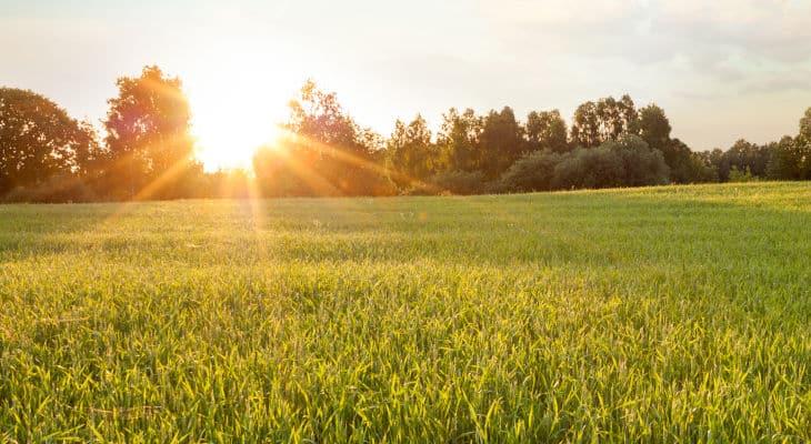 Air Liquide va distribuer du CO2 bio-sourcé en Bretagne en 2022