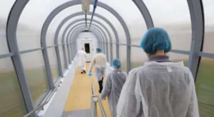 Panorama des IAA : Les industries agroalimentaires plus que jamais face aux défis