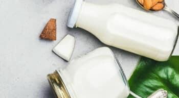 L'amendement de l'UE visant à censurer les alternatives végétales aux produits laitiers bientôt examiné