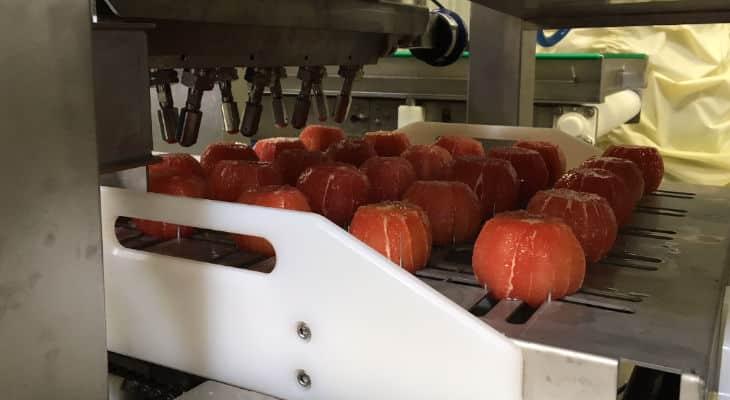 Mécanuméric conçoit une chaîne de production sur-mesure dédiée à la découpe d'agrumes