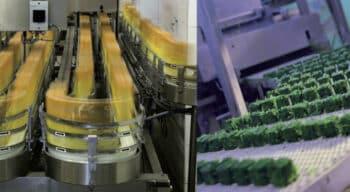 Durabilité et sécurité alimentaire: Ce qu'il faut connaitre sur les fluides et les lubrifiants