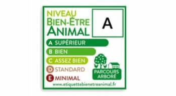 Après la volaille, l'étiquette Bien-Être Animal bientôt sur les produits porcins