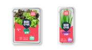 Emballage : Agricool opte pour un packaging rPET