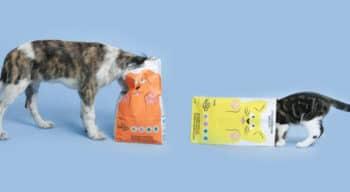 PetFood: Tomojolance ses premières croquettes aux insectes pour chiots et chatons